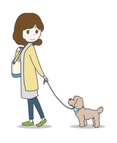 アイコンタクトしながら、散歩して飼い主と仔犬のイラスト