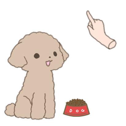 フードを前にして、仔犬に「お座り」の指示を出すイラスト
