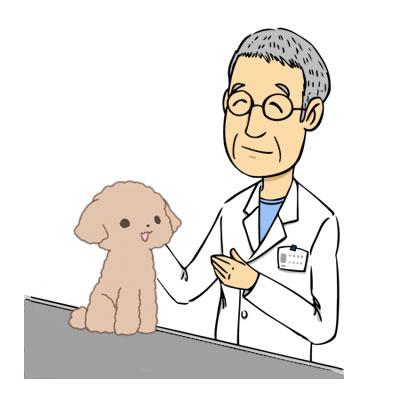 獣医と診察台の上に座る仔犬