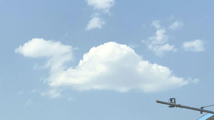 首長竜の形に見える雲